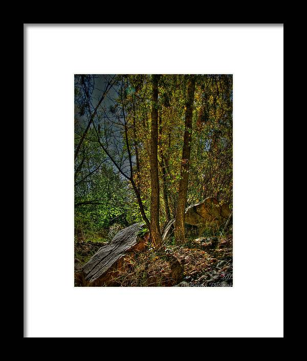 Prescott National Forest Framed Print featuring the photograph Golden Cottonwood Between The Boulders by Aaron Burrows