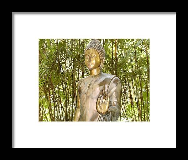 Elaine Haakenson Framed Print featuring the photograph Golden Goddess by Elaine Haakenson