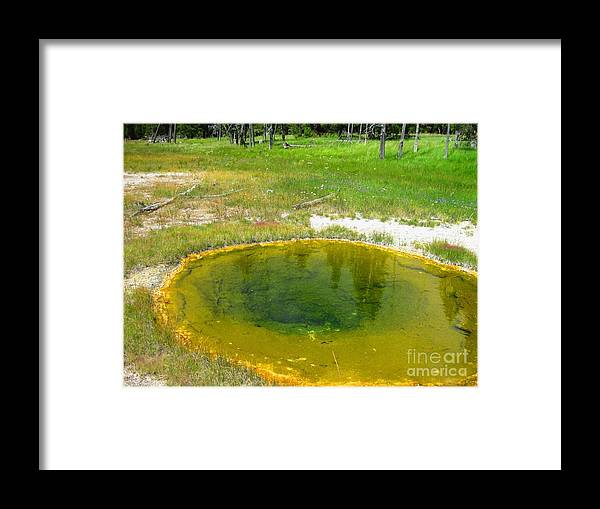 Wyoming Framed Print featuring the photograph Golden Ocean by Paula Cork