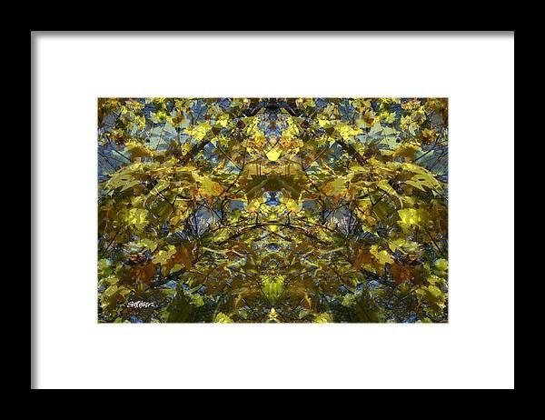 Golden Rorschach Framed Print featuring the photograph Golden Rorschach by Seth Weaver