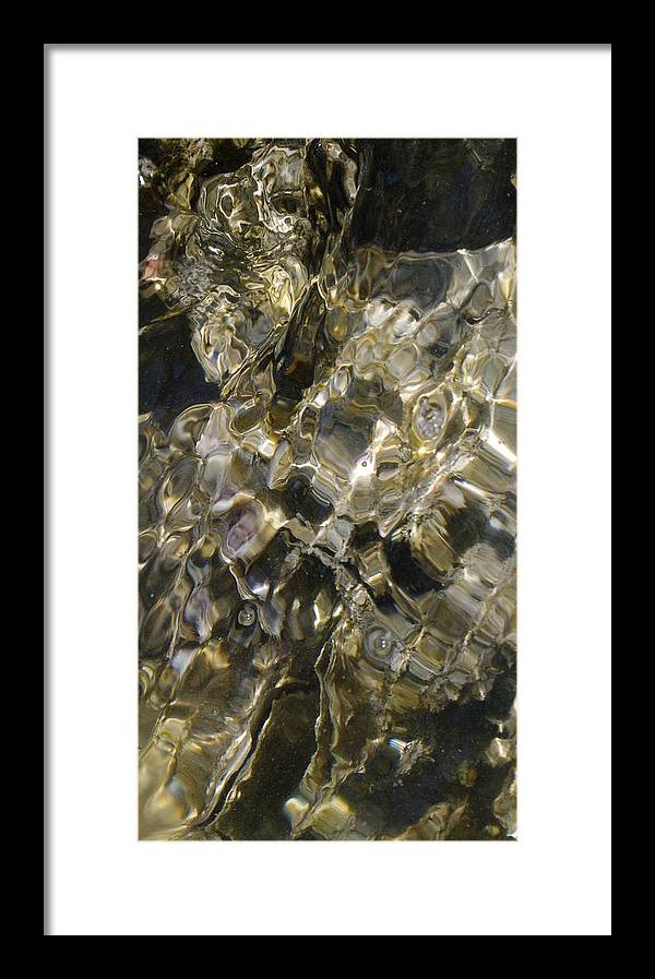 Oyster Golden Water Ocean Pearls Treasure Sunlight Coast Florida Framed Print featuring the photograph Golden Treasure Just Below by Becky Arvin