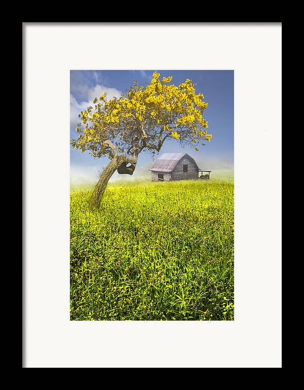 Appalachia Framed Print featuring the photograph Good Morning Spring by Debra and Dave Vanderlaan