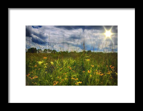 Field Framed Print featuring the photograph Good Morning Sunshine by Bill Tiepelman