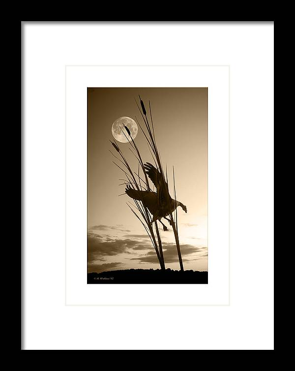 2d Framed Print featuring the photograph Goose At Dusk - Sepia by Brian Wallace