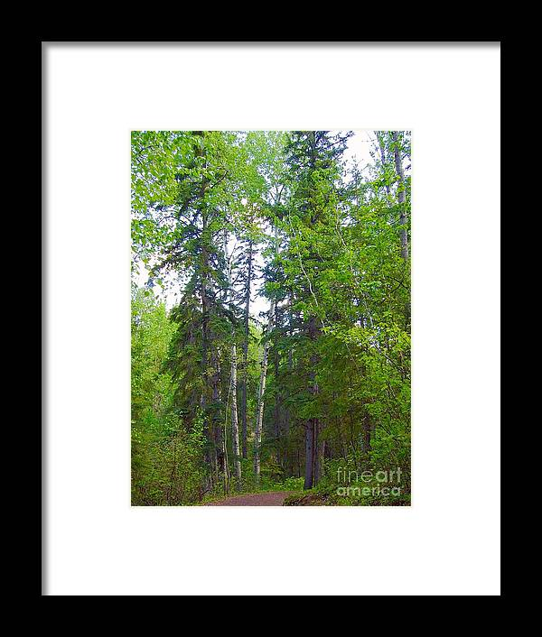 Trees Framed Print featuring the photograph Grace by Jim Sauchyn