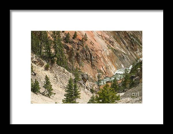Grand Canyon Framed Print featuring the photograph Grand Canyon And Yellowstone River by Living Color Photography Lorraine Lynch