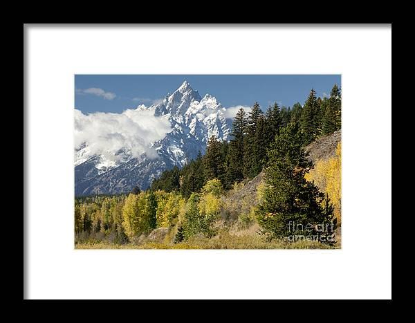 Sandra Bronstein Framed Print featuring the photograph Grand Teton by Sandra Bronstein