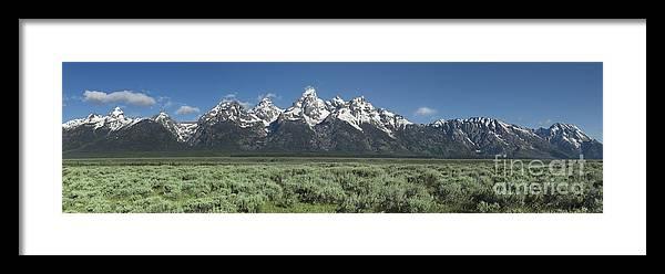 Bronstein Framed Print featuring the photograph Grand Teton Spring by Sandra Bronstein