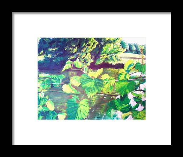 Botanical Framed Print featuring the painting Grapevines Toledo Botanical Gardens by Samuel McMullen
