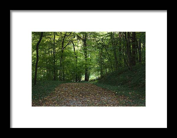 Green Framed Print featuring the photograph Green Cemetery Road by James Collier