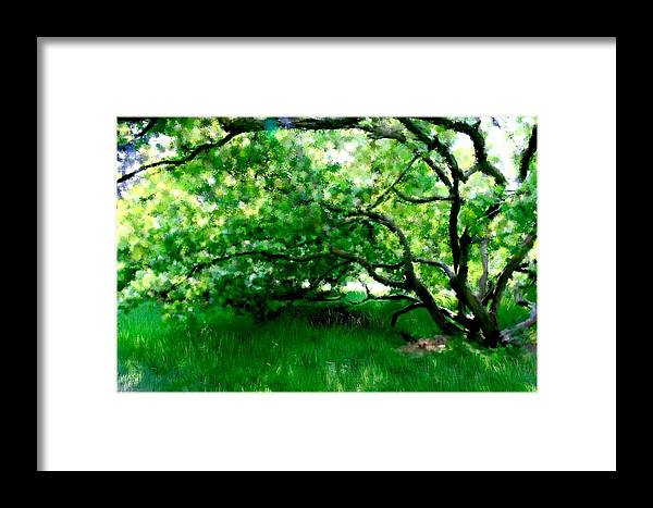 Tree Framed Print featuring the painting Green Tree by Rita Amirahmadi