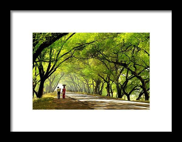 Landscape Framed Print featuring the photograph Green Tunnel by C R Shelare