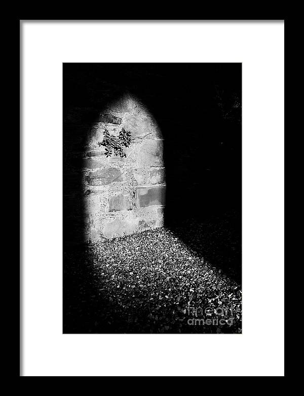 Ruins Framed Print featuring the photograph Greyabbey County Down Northern Ireland by Joe Fox