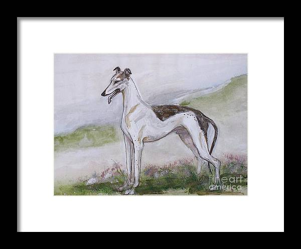 Grehound Framed Print featuring the painting Greyhound Standing by Ron Hevener