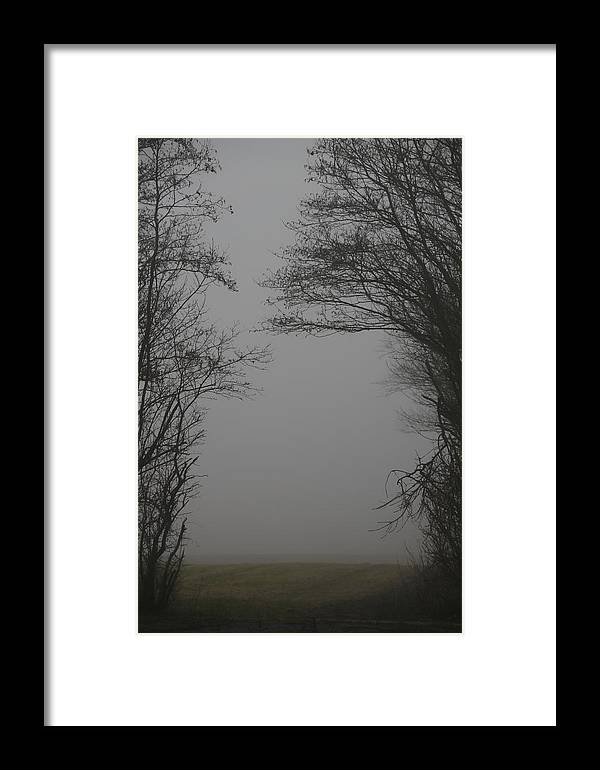 Guardians Framed Print featuring the photograph Guardians by Odd Jeppesen