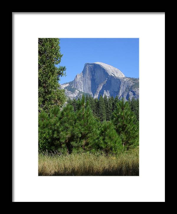 Yosemite Framed Print featuring the photograph Half Dome by Cyndi Combs