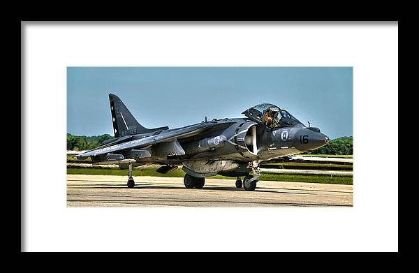 Harrier Framed Print featuring the photograph Harrier by Mitch Cat
