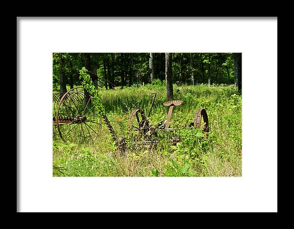 Farm Framed Print featuring the photograph Hay Cutter 4 by Douglas Barnett