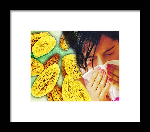 Hay Fever Framed Print featuring the photograph Hay Fever by Hannah Gal