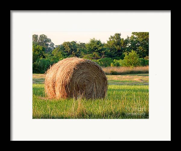 Hay Framed Print featuring the photograph Haybale by Louise Peardon