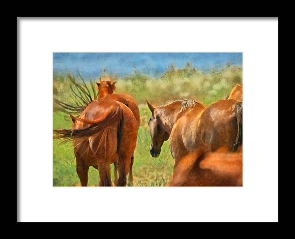 Horse Framed Print featuring the digital art Heading Home Painterly by Ernie Echols