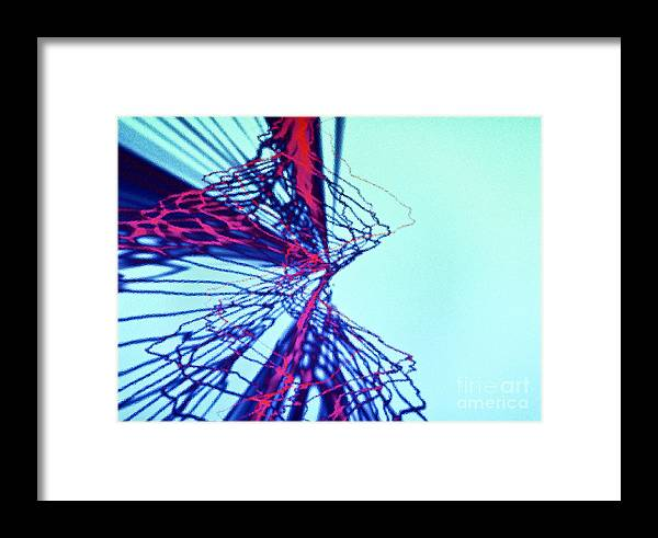 Framed Print featuring the photograph Heart Attack by Tashia Peterman