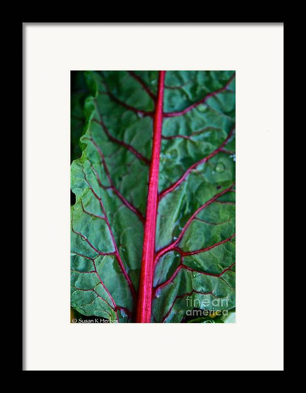 Food Framed Print featuring the photograph Heart Wise by Susan Herber