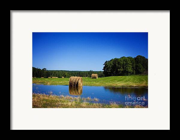 Pond Framed Print featuring the photograph High And Dry On The North Forty by The Stone Age