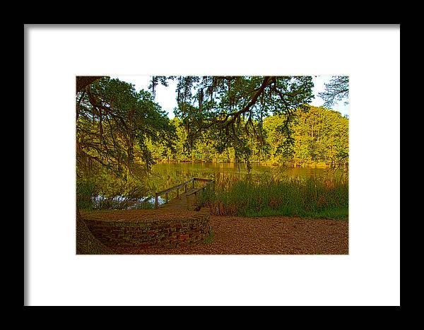 Pond Framed Print featuring the photograph Hobcaw Barony Pond by Bill Barber