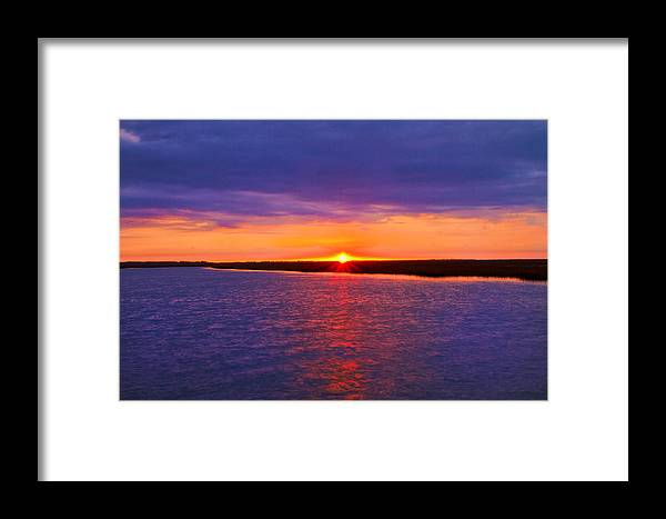 Sunrise Framed Print featuring the photograph Hobcaw Barony Sunrise by Bill Barber