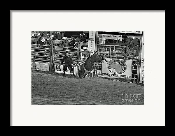 Bull Riding Framed Print featuring the photograph Hold On For 8 by Shawn Naranjo