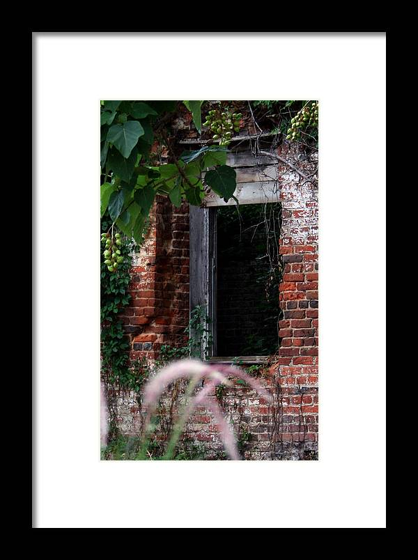 Petersburg Framed Print featuring the photograph Hole In The Wall by Karen Harrison
