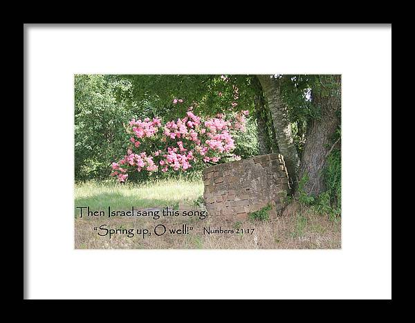 Flower Framed Print featuring the photograph Holmes Family Well by Mike Lytle