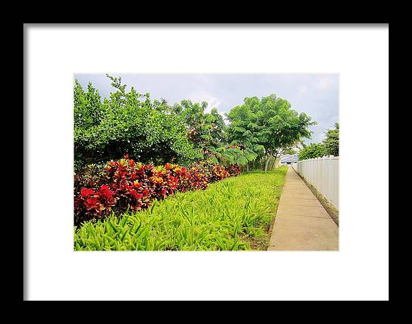 Landscape Framed Print featuring the photograph Home by V Rodriguez