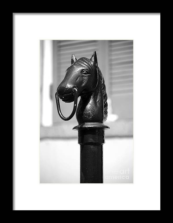 Horse Head Pole Hitching Post Macro French Quarter New Orleans Black ...