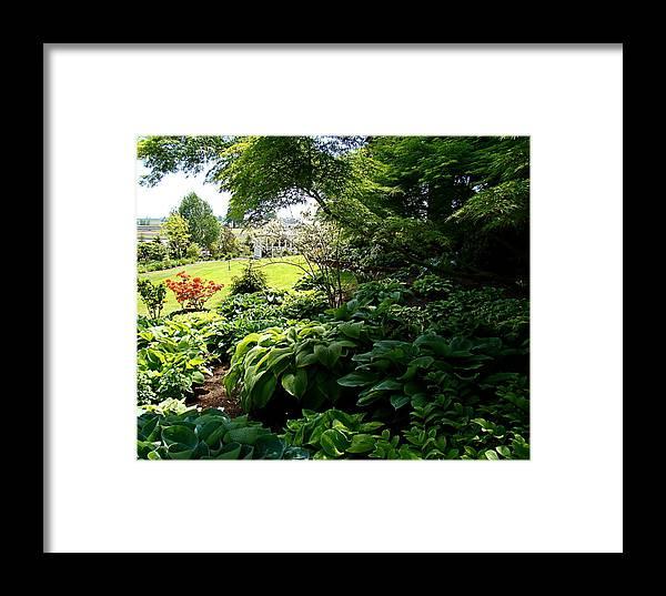 Hosta Framed Print featuring the photograph Hosta Garden by Nick Kloepping