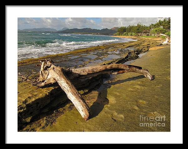 Hawaii Framed Print featuring the photograph How Did This Get Here by Bruce Borthwick