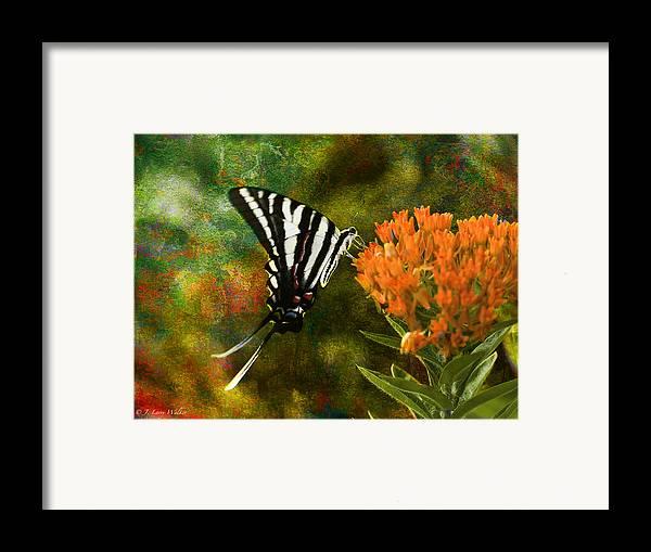 J Larry Walker Framed Print featuring the digital art Hungry Little Butterfly by J Larry Walker