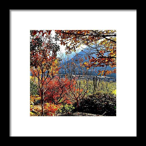 Beautiful Framed Print featuring the photograph I Colori Dell'autunno - The Colors Of by Luisa Azzolini