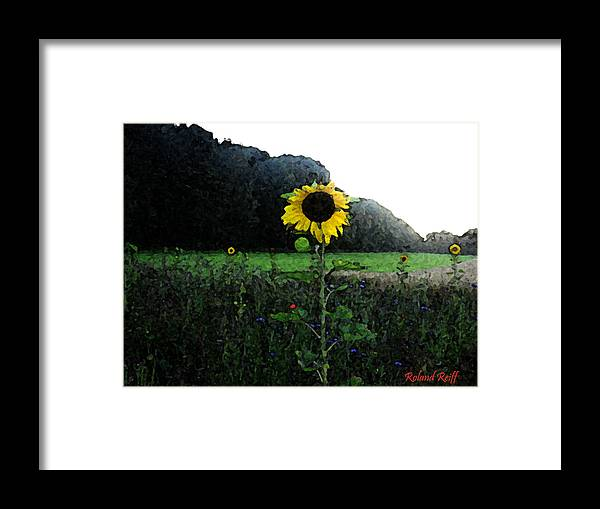 Watercolor Framed Print featuring the digital art I Love Sun by Roland Reiff