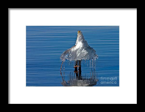 Ice Framed Print featuring the photograph Icy Blue Twist by Mitch Shindelbower