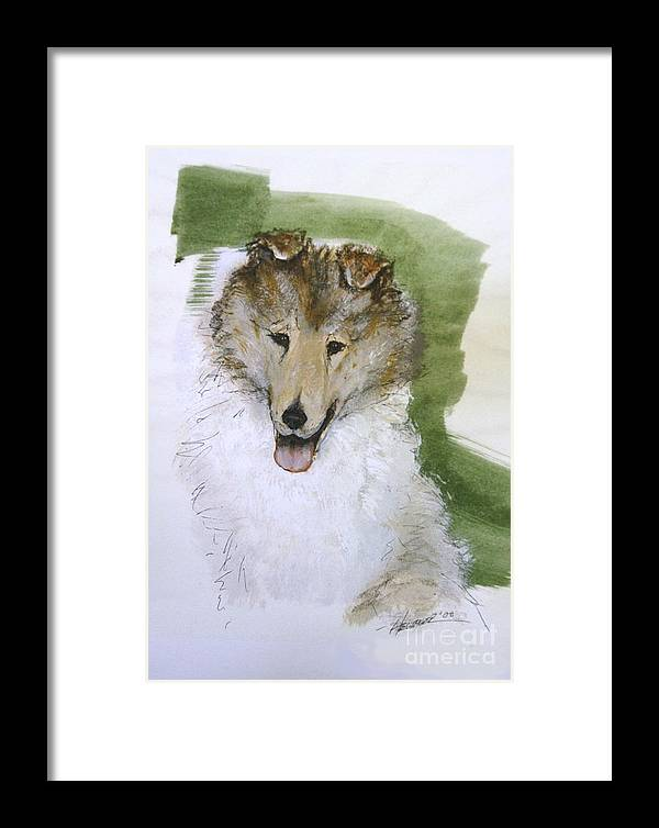 Collie Framed Print featuring the painting If You Love Me by Ron Hevener