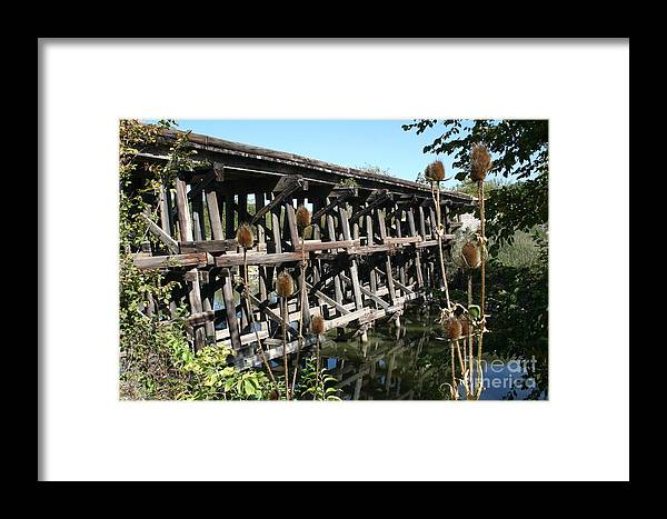 Railroad Framed Print featuring the photograph Illinois Central Wooden Train Bridge by Roger Look