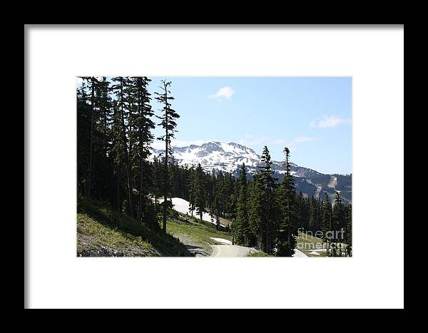 Framed Print featuring the photograph Img0100 by Jane Whyte