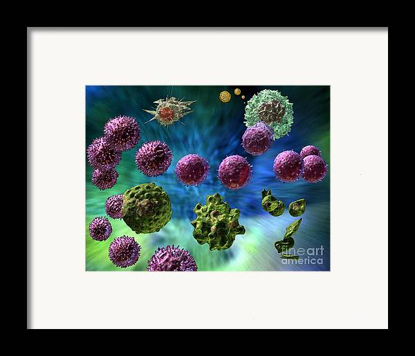 Antigens Framed Print featuring the digital art Immune Response Cytotoxic 1 by Russell Kightley