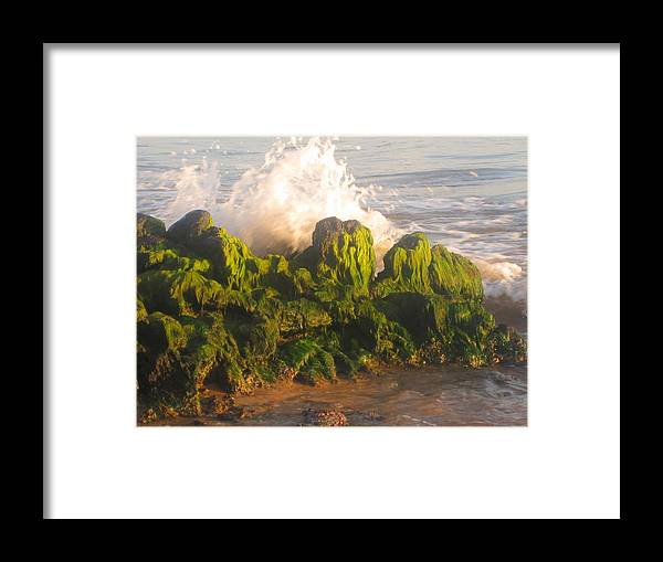 Sea Framed Print featuring the photograph In The Magic Light by Marilyn Wilson