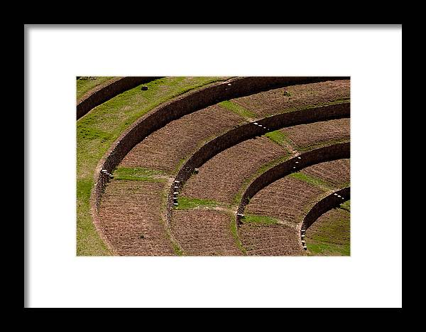 Outdoor Framed Print featuring the photograph Inca Crop Terraces At Moray by Michael S. Lewis