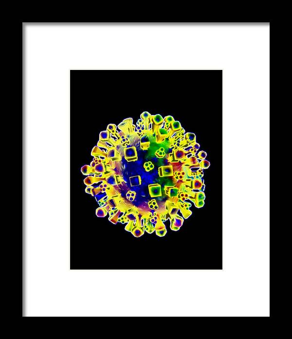Anatomy Framed Print featuring the photograph Influenza Virus, Artwork by Victor Habbick Visions