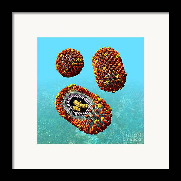 Biological Framed Print featuring the digital art Influenza Virus Scene 1 by Russell Kightley