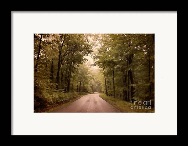 Road Framed Print featuring the photograph Into The Mists by Lois Bryan